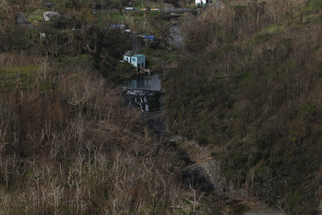 Habitat Puerto Rico - Help Plant 750,000 Trees
