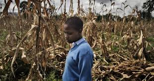 Fighting Against Female Genital Mutilation