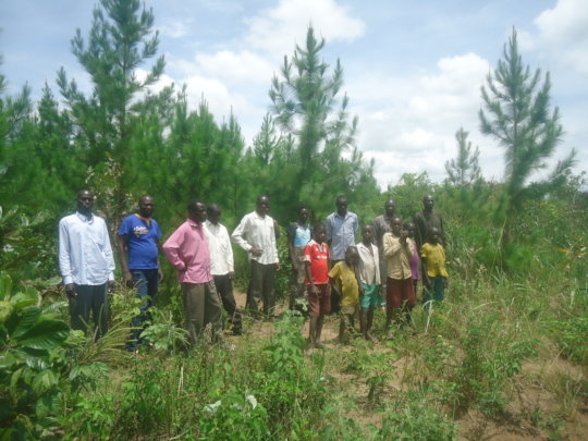 RAISE MONEY FOR PLANTING 324,000 TREES IN UGANDA
