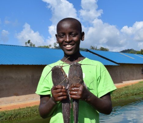 Ugly Fish: Let's Feed 900+ Schoolchildren in Kenya
