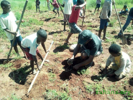 Stundents planting trees in Madagascar