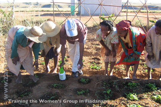 Agricultural Expert (with shoes) teaching planting