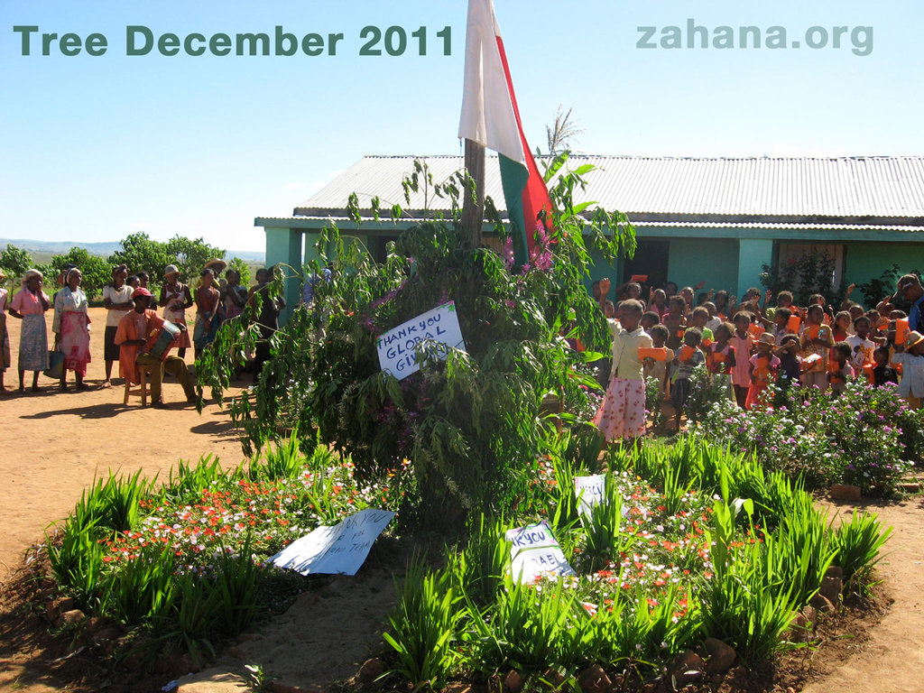 The School Christmas tree in 2011
