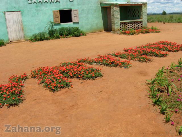 "The flowers spell ""zahana"""