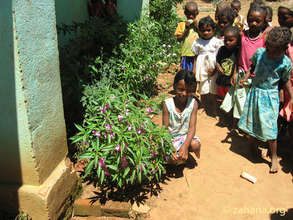 Fiadanana's school house