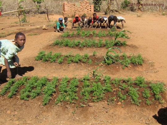School garden when they attended school in 2010