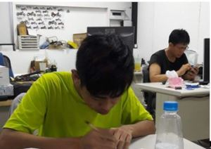 Xiaoting works and learns hard in the office