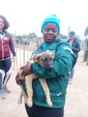 Tinyiko loving puppies on an outreach day!