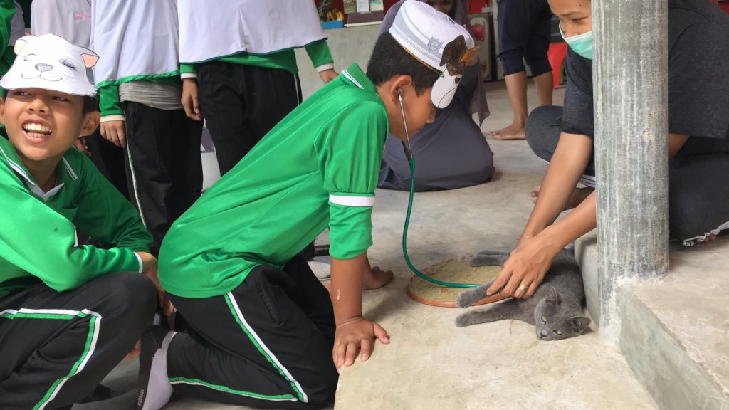 Educating local boys on medical care for animals