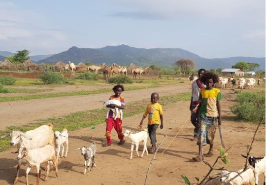 Restore Hope for over 10,000 Ethiopian Refugees