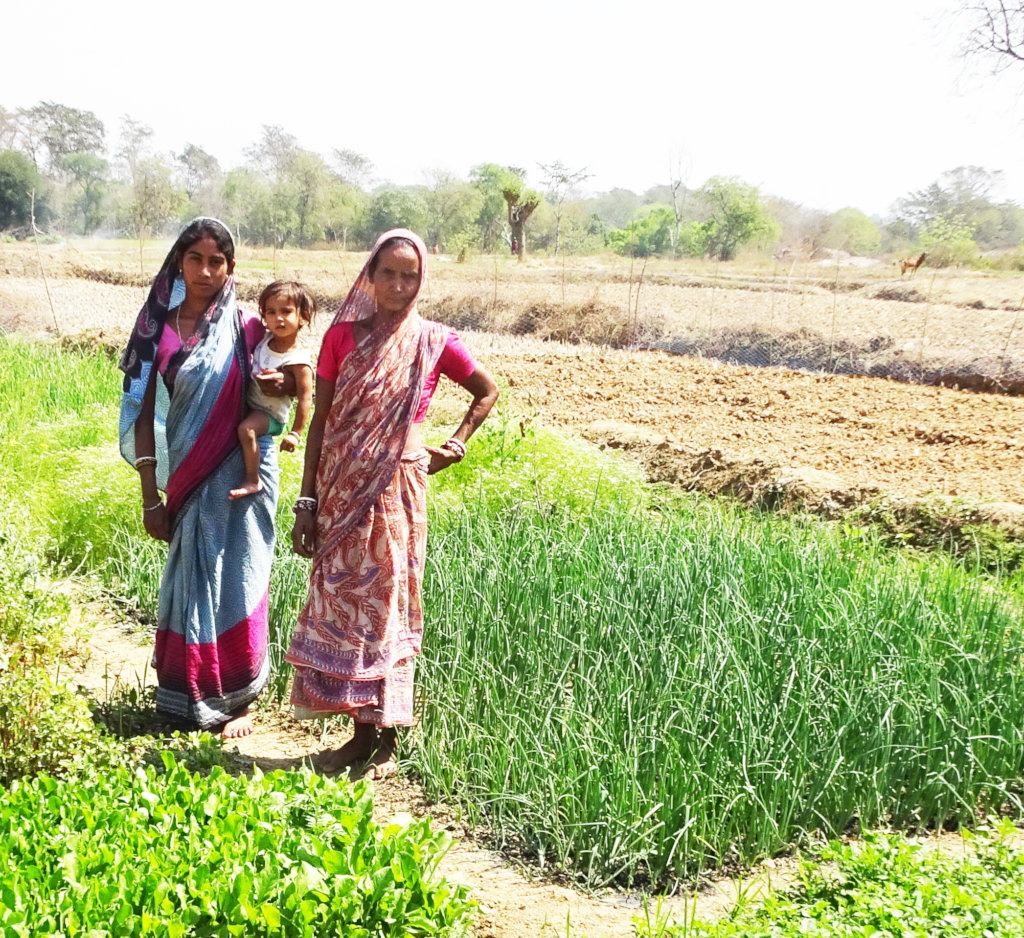 Plant Kitchen Gardens for Mothers in India