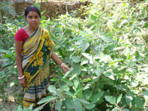 An Indian Mother in the Kitchen Garden