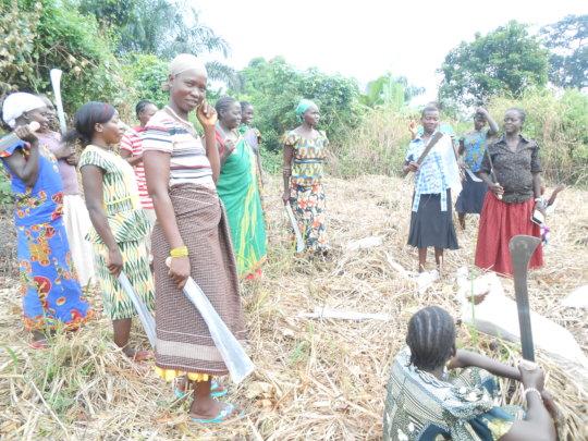 Women farmers clear their garden