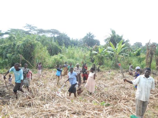 Women farmers begin to clear bush for cultivation