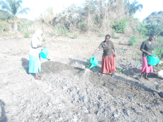 Women farmers on manual irrigation