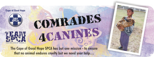 Comrades 4 Canines to raise $6000 to treat animals