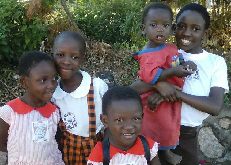 Livelihood support for vulnerable households