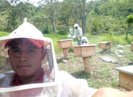 Employment for young adults in honey coops