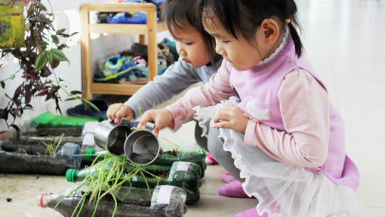 Plants - what better way to learn about nature?
