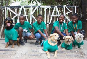 Children & dogs