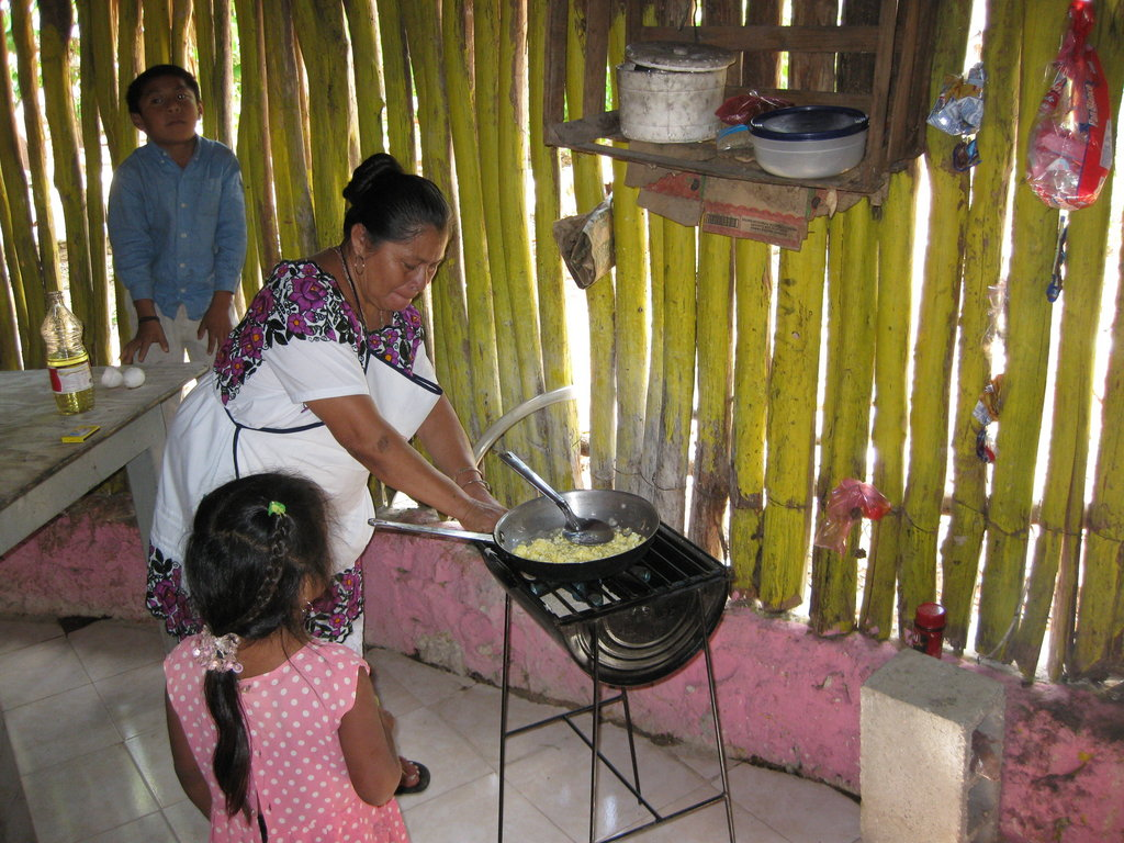 Eco Technology for Indigenous Families in Mexico