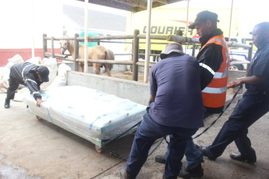 Equine Operating Table arrives at the CoGH SPCA