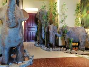 Our elephant exhibition in the Nature Art Gallery