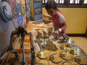A young visitor digs for dinosaur bones