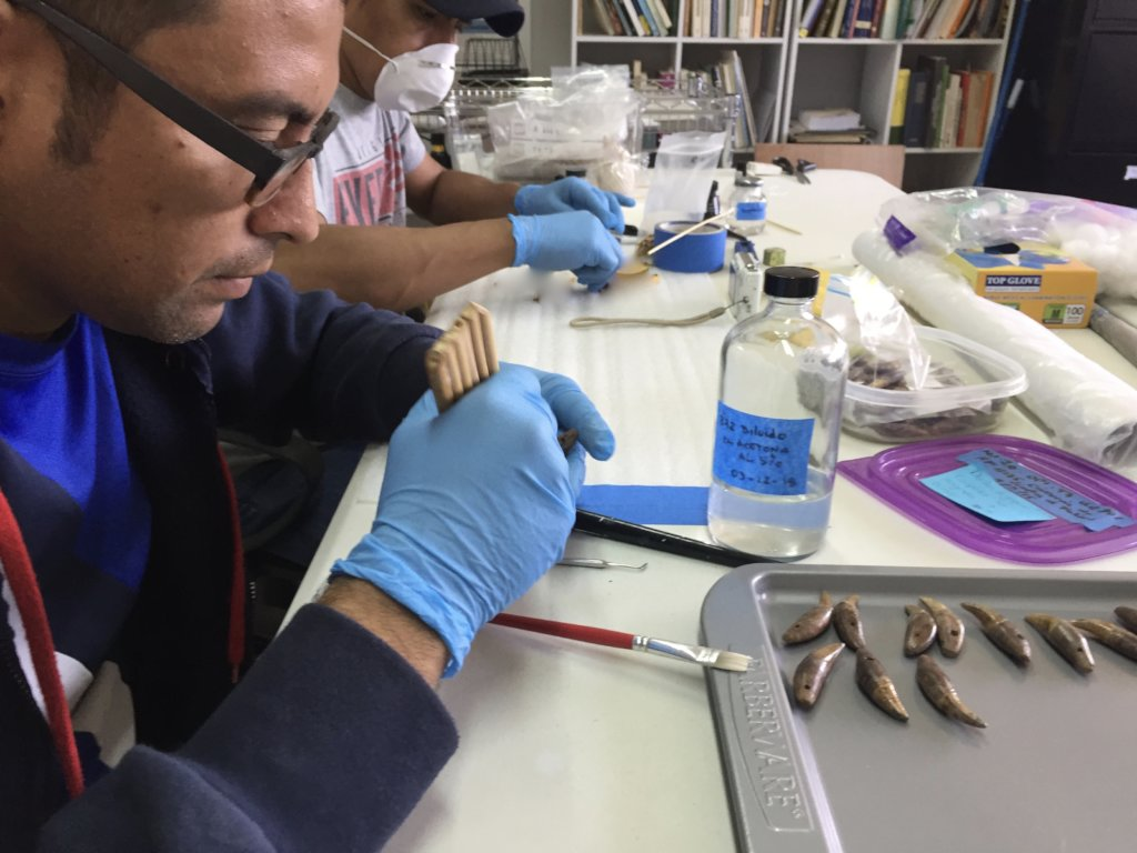 Cleaning and conserving the artifacts