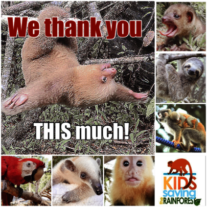 Our thanks to all of you!