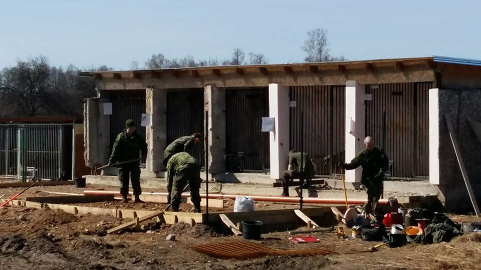 Reconstruction Of Animal Shelter in Latvia