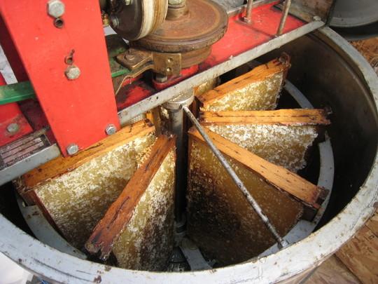 project honey extractor