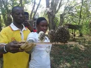 Omilling women see hope in beekeeping!