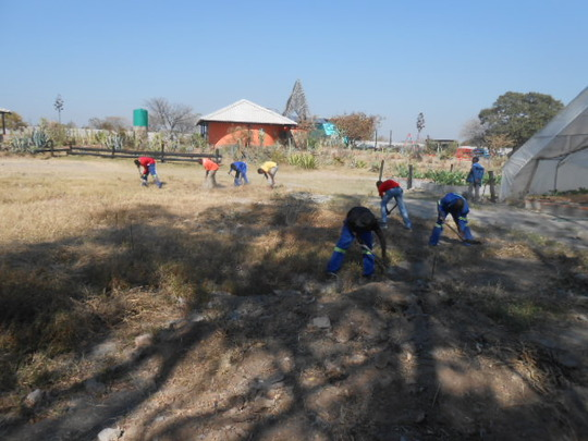 Clearing the land for our pre-school