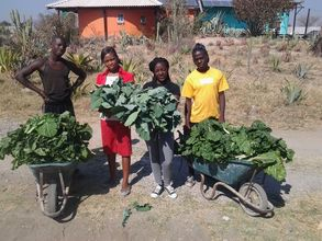 Produce from our expanded greenhouse feed our kids