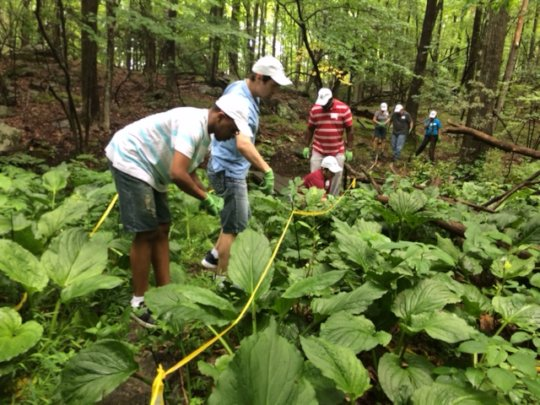 Community Based Services enjoy working in nature