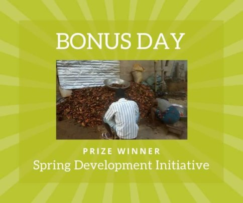 Bonus Day Win