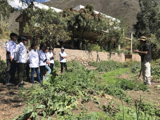 Chefs visiting the farm