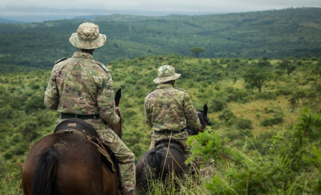 Support Mounted Rangers Fighting Rhino Poaching