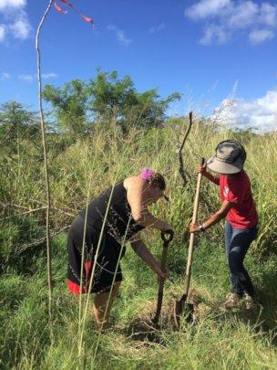 Tree planting at the coastal reserve