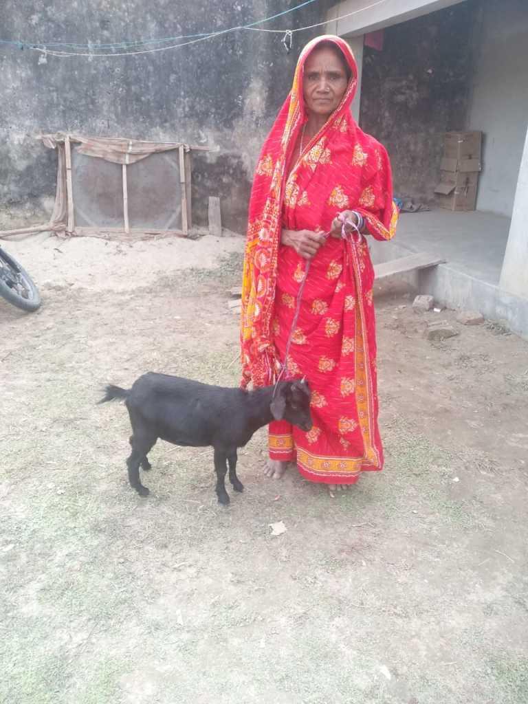Hanufa from village Shafkat Nagar