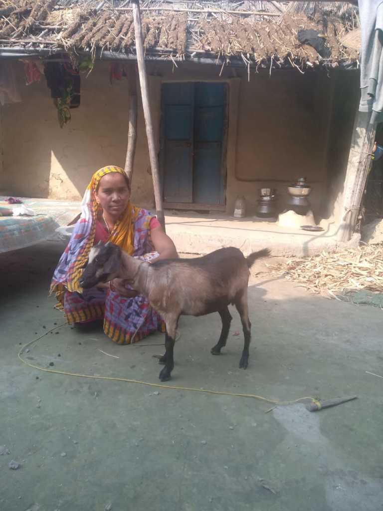 Ansara from village Marya