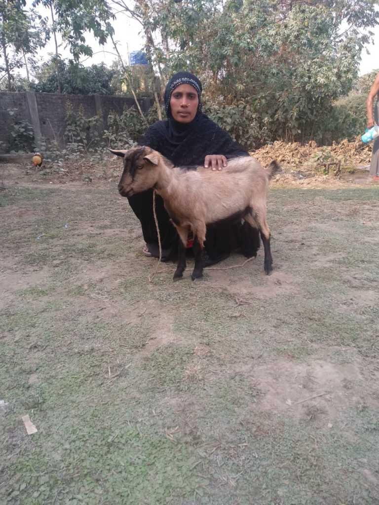 Surajnisa from village Shafkat Nagar