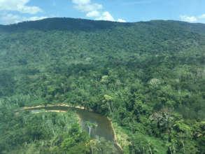 Bird's-eye view of Iguana in the Venezuelan Amazon
