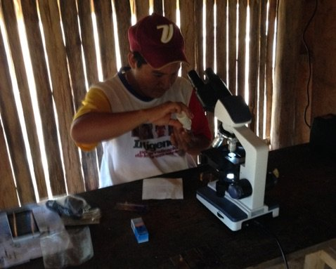 Joti microscopist Alirio at work in Kayama