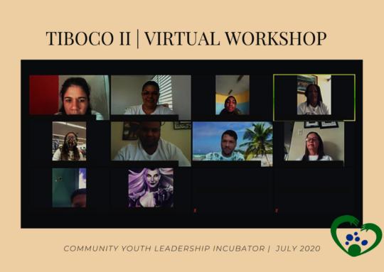 Community Youth Leadership Incubator goes virtual