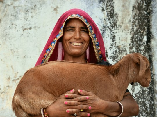 Give A Goat to A Poor Rural Women