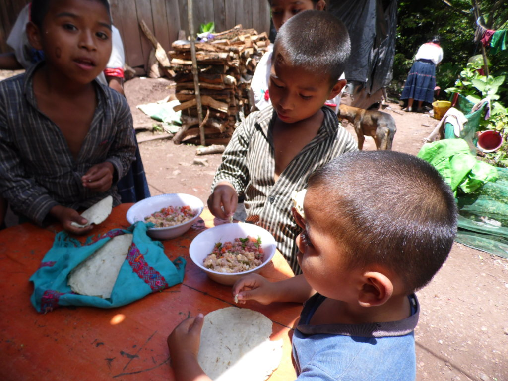 Nutrition for me and all my friends: Chiapas