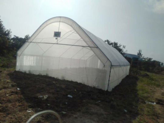 The new greenhouse for growing crops