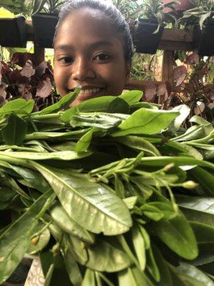 Indigenous vegetable